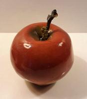 cursist appel vogel