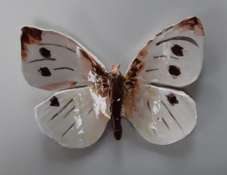 vlinder_03
