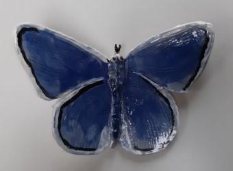 vlinder_04